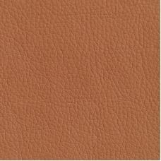 Искусственная кожа Oregon 06
